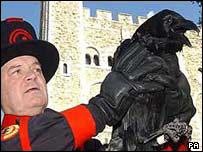 Raven Master