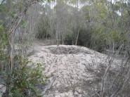 Mallee Fowl Mound cc