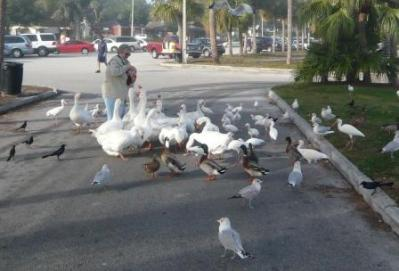 Me Feeding The Beggars!