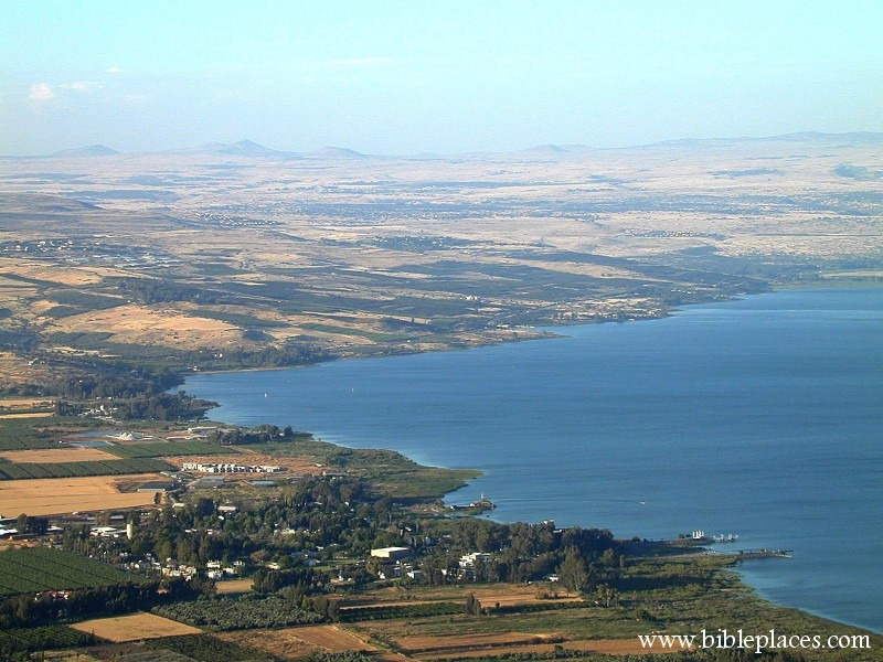 Galilee Shoreline From Above (BiblePlaces.com)