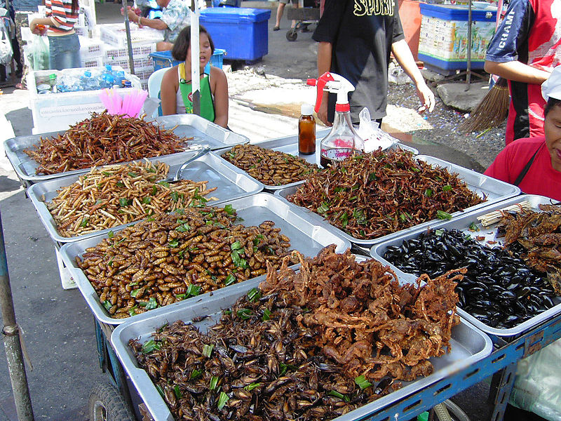 Locust - Insect food stall ©WikiC