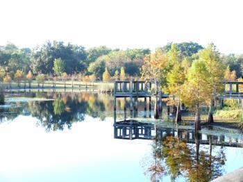 Reflective View at South Lake Howard Nature Park