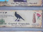 Crested Oropendola (Psarocolius decumanus) Sign