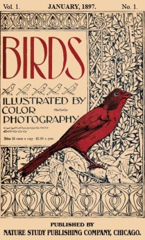 Birds Illustrated by Color Photograhy Vol 1 January 1897 No 1 - Cover
