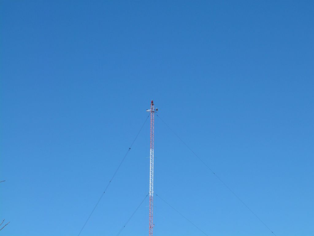 Bald Eagle on tower at S Lake Howard NPk 3 by Lee