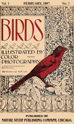 Birds Illustrated by Color Photograhy Vol 1 February 1897 No 2 - Cover