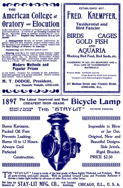 Birds Illustrated Ad - Feb