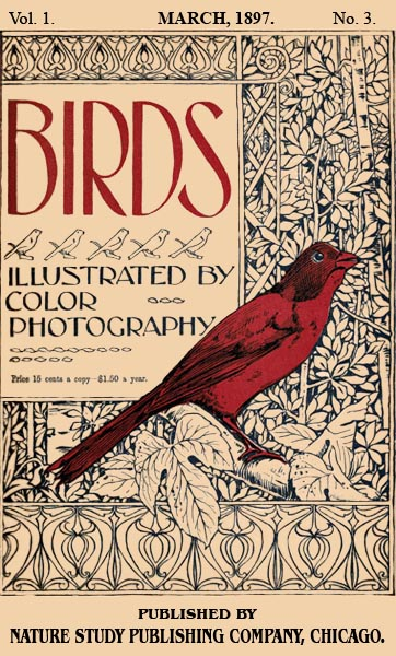 Birds Illustrated by Color Photograhy Vol 1 March 1897 No 3 - Cover