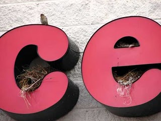 House Sparrow nest in Sign
