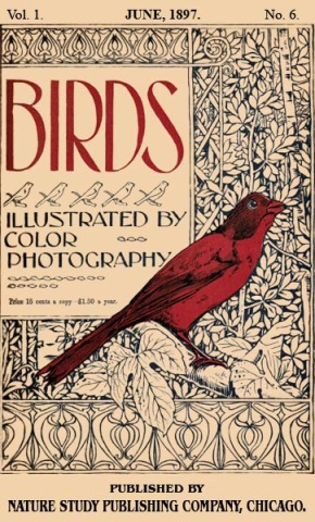 Birds Illustrated by Color Photograhy Vol 1 June, 1897 No 6 - Cover