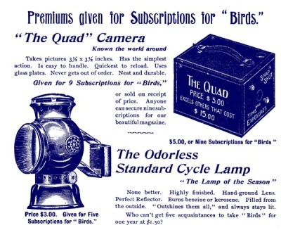 Ad for Birds Illustrated by Color Photography, 1897