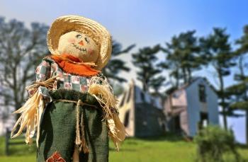 Scarecrow ©©