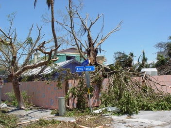 Hurricane Charley damage at Captiva, Trees stripped.
