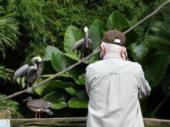 Dan at Work at Jacksonville Zoo