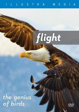 Flight DVD face