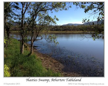 Hasties Swamp, Atherton Tableland by Ian