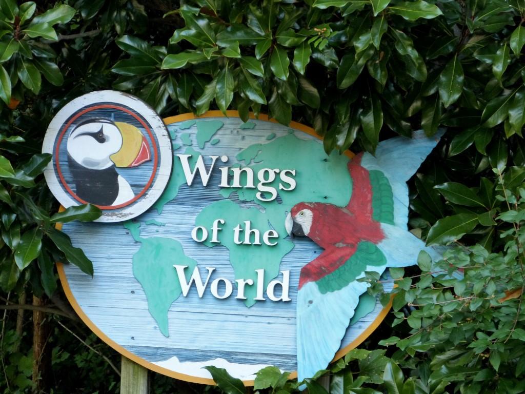 Wings of the World Aviary - Cincinnati Zoo 9-5-13
