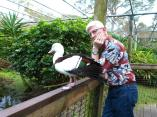 Dan and a Radjah Duck Brevard Zoo