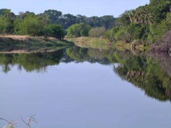 Myakka River SP