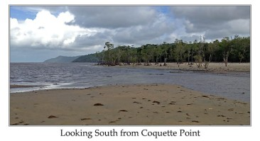 Looking South from Croquette Point by Ian