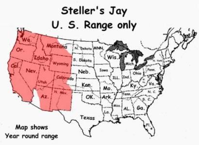 Steller's Jay (Cyanocitta stelleri) US Range Map ©WikiC