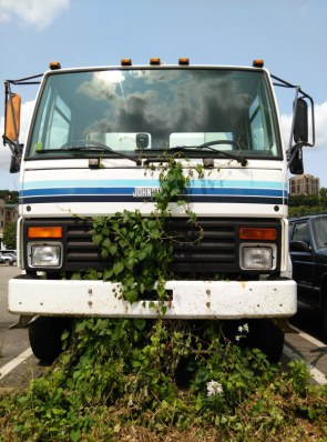 In Love With Words - Crying Truck and Virginia Creeper