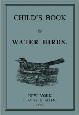 Child's Book of Water Birds – Re-visited