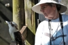 Laughing Kookaburra at Brevard Zoo by Dan with my camera