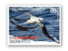 Ian's Stamp of the Week – Antipodean Albatross
