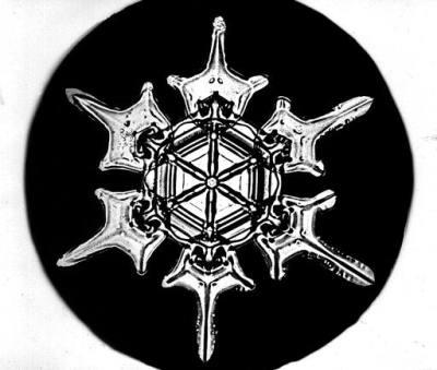 Snowflake ©WikiC