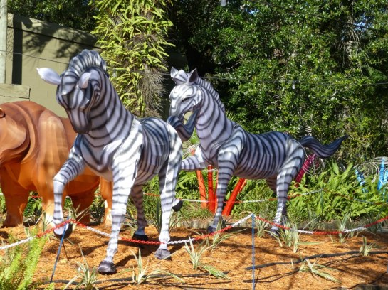 ZooMinations at Lowry Park Zoo (11)