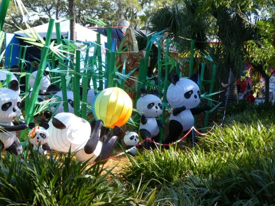 ZooMinations at Lowry Park Zoo (25)