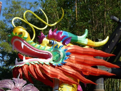 Dragon - ZooMinations at Lowry Park Zoo