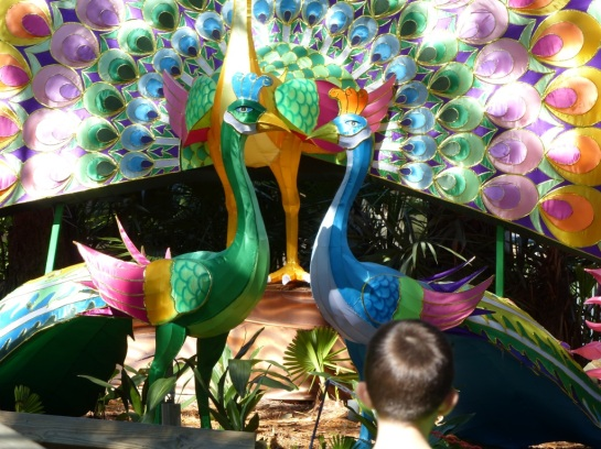 ZooMinations at Lowry Park Zoo (39)