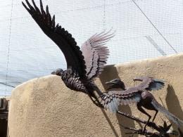 DINOSAUR-TO-BIRD EVOLUTION CHALLENGED –(Repost)