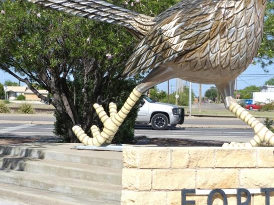 Roadrunner in Ft Stockton TX (33)_01