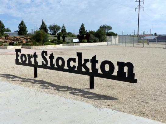 Roadrunner in Ft Stockton TX (4)_01
