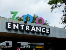 Houston Zoo – Vacation – Part 2