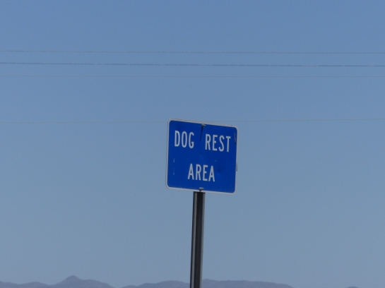 Dog Rest Area