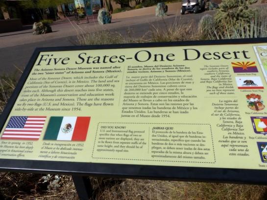 Desert Mus-Tucson (15)