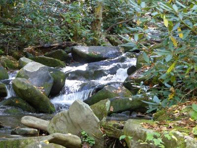 Stream on Roaring Fork Nature Drive