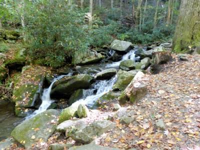 Stream through the park - SMNP by Lee