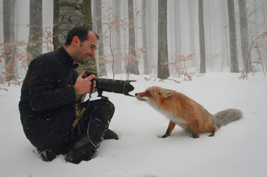 Photographers with animals 1