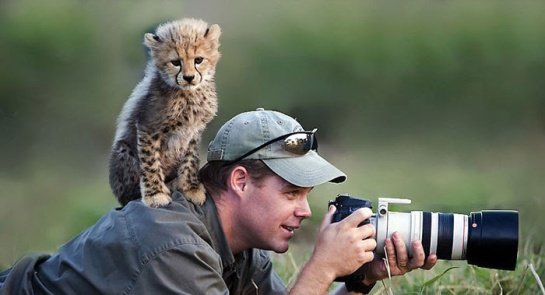 Photographers with animals 12