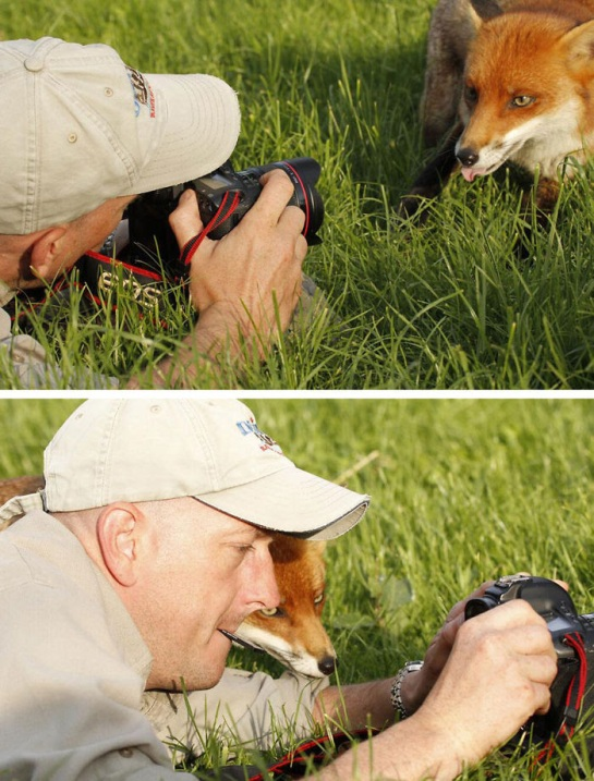 Photographers with animals 3