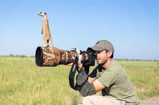 Photographers with animals 7