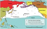 Short-tailed Albatross Map