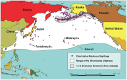 Short-tailed Albatross Map