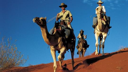 Camel Riders ©Travelnt.com
