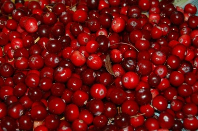 Cranberries ©Pixabay